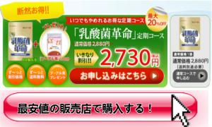 乳酸菌革命通販購入激安注文販売店へのリンク-500x300