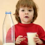 乳酸菌は牛乳には入っていないヽ(´Д`;)ノ