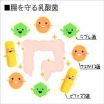 乳酸菌の効果の一覧