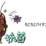 ゴキブリが運ぶ菌はほとんどが乳酸菌