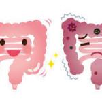 悪玉菌が増殖しているかどうかは、ガス(おなら)や便の臭いでわかる