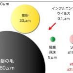 ビフィズス菌や乳酸菌の大きさ比較!