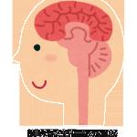 腸内フローラで脳が健康的に!