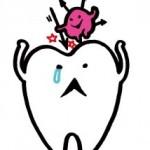 乳酸菌の摂り過ぎで虫歯になる人が増加中